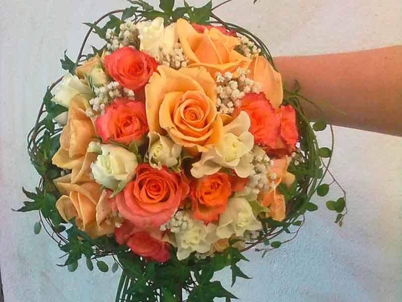 gruber halfing floristik impressionen 1 Impressionen