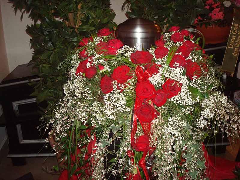 gruber halfing floristik impressionen 14 Impressionen