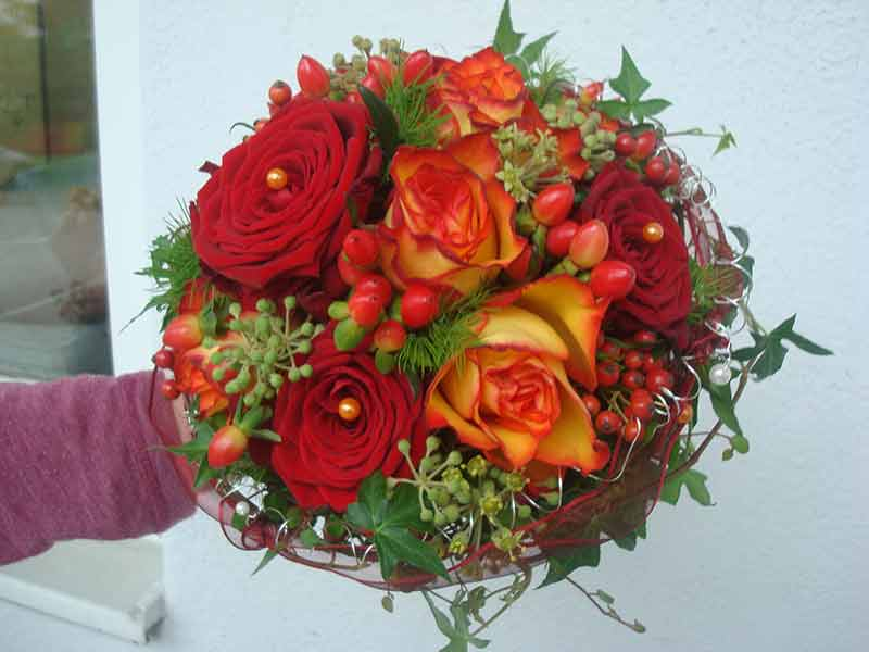 gruber halfing floristik impressionen 18 Impressionen