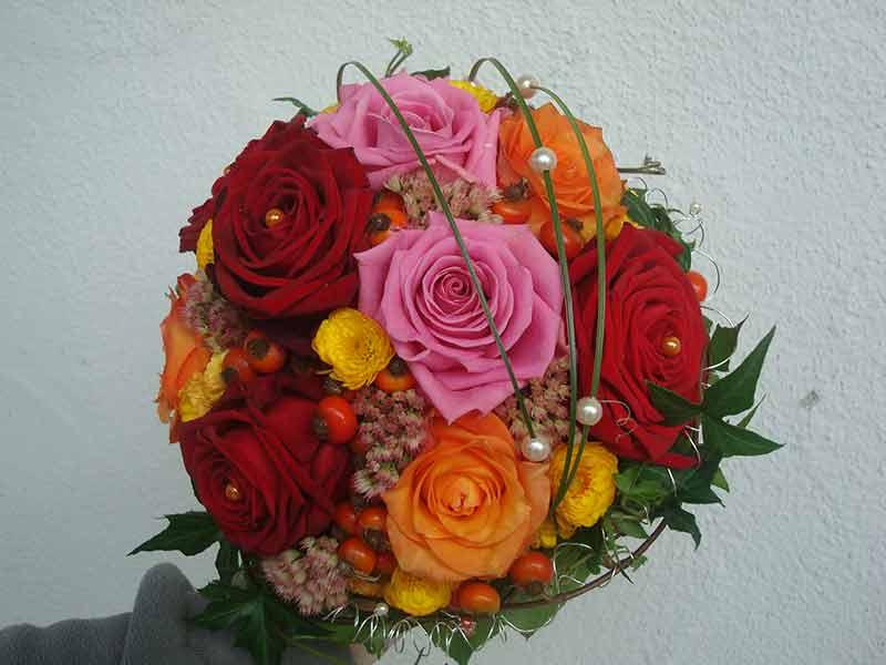 gruber halfing floristik impressionen 19 Impressionen