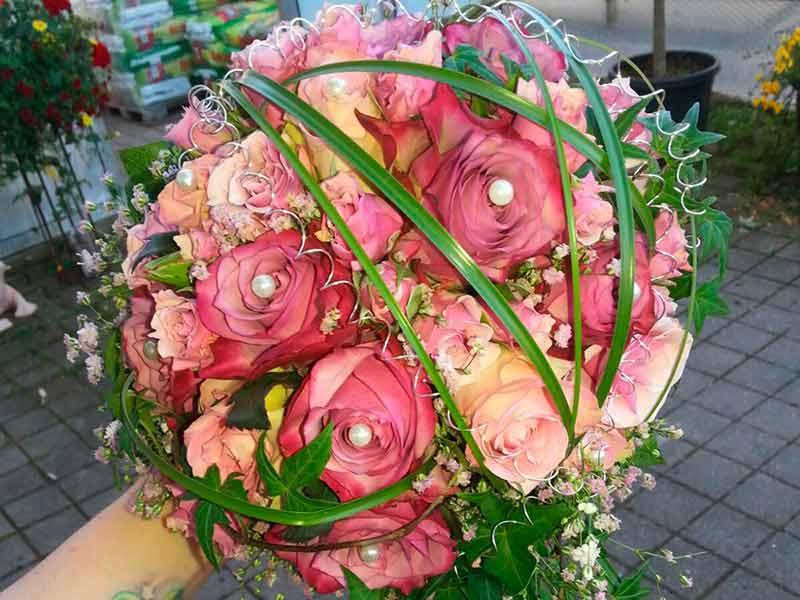 gruber halfing floristik impressionen 2 Impressionen