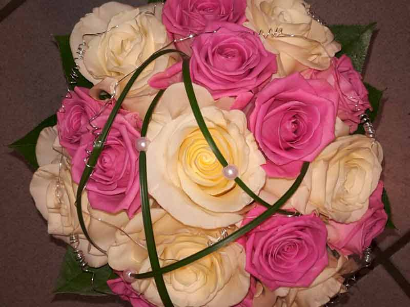 gruber halfing floristik impressionen 4 Impressionen