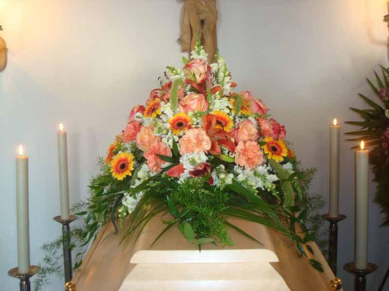 gruber halfing floristik impressionen 5 Impressionen