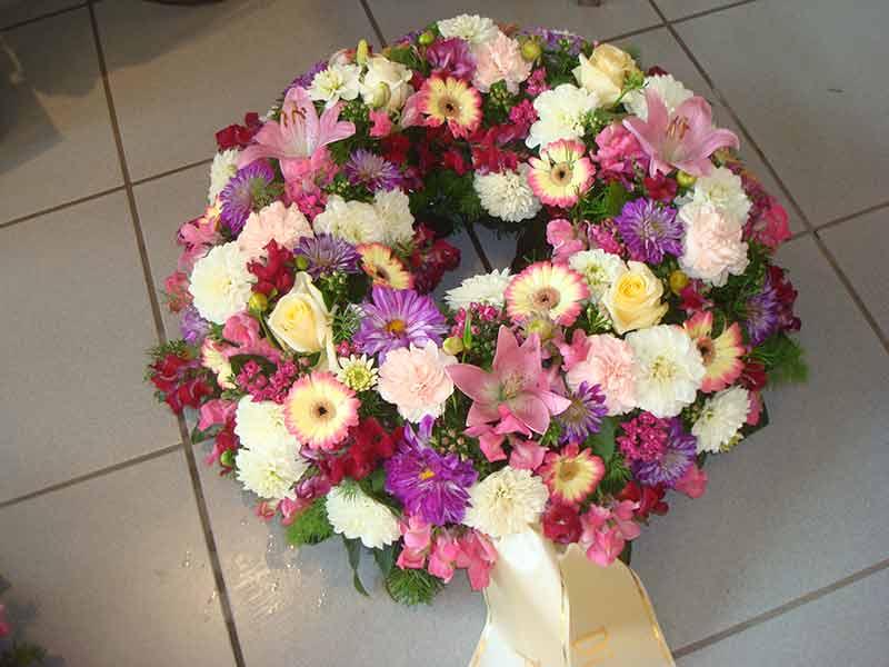 gruber halfing floristik impressionen 6 Impressionen