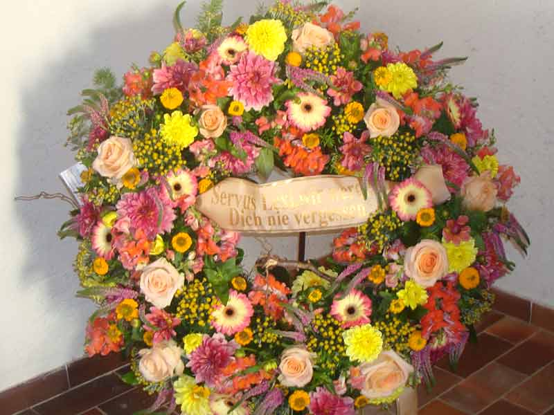 gruber halfing floristik impressionen 7 Impressionen