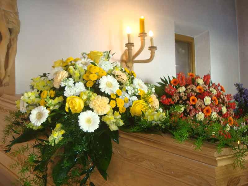 gruber halfing floristik impressionen 8 Impressionen