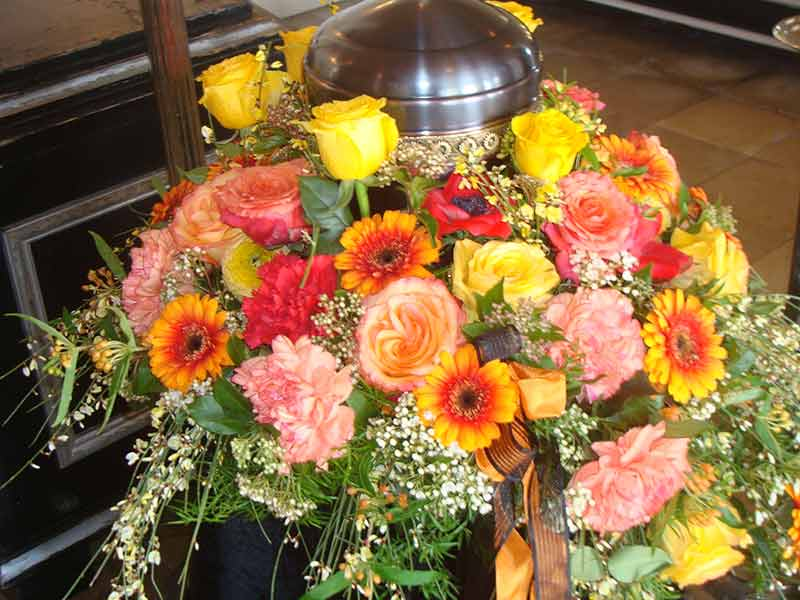 gruber halfing floristik impressionen 9 Impressionen